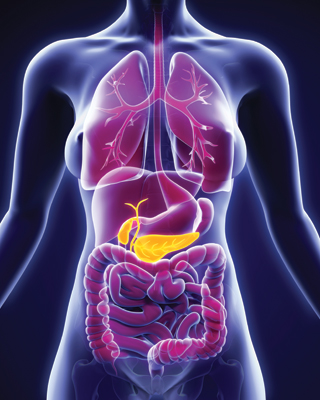 A link to pancreatic cancer
